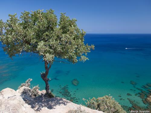 autotour trésors de chypre ****