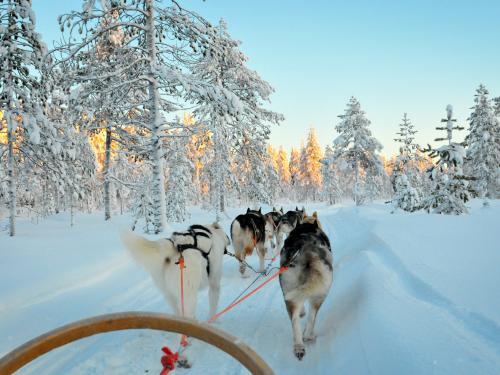 Club Framissima Premium Holiday Club Laponie (pension complète, activités incluses) ****