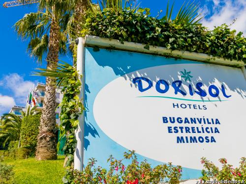 Photo n° 19 Hôtel Dorisol : Buganvilia / Mimosa ***