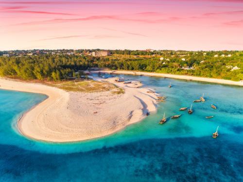 Circuit Zanzibar : entre nature, senteurs et plages (Framissima Paje Palms Beach) 4* sup
